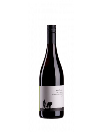 Pinot Noir vom Buntsandstein