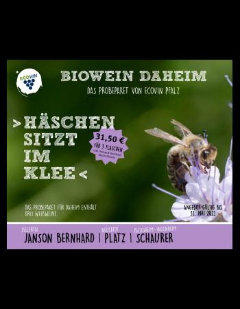 """Wein am Dom Probierpaket """"Häschen sitzt im Klee"""" - Ecovin Pfalz"""