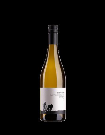 Sauvignon Blanc vom Quarzit